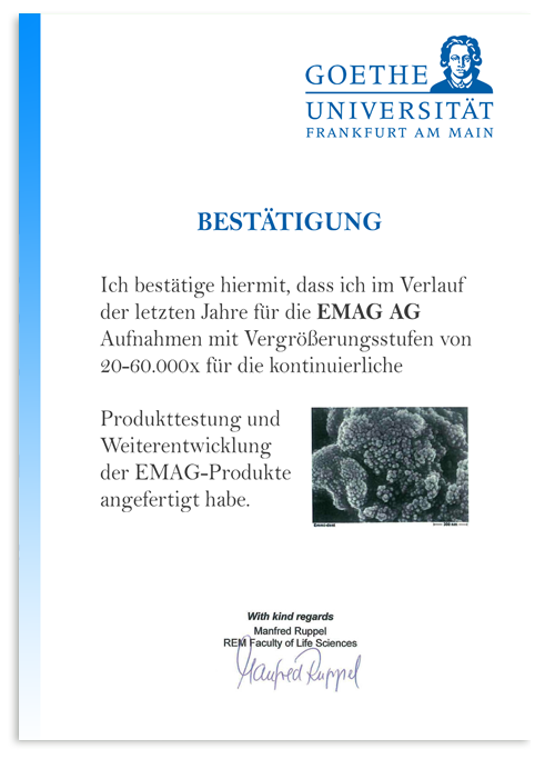 Goethe Universitat oklevele